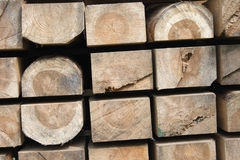 Tree Materials Royalty Free Stock Images