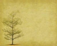 Tree med gammala den pappers- grungeantikviteten Royaltyfria Foton