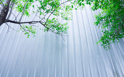 Tree with Metal sheet at construction site, Eco construction Royalty Free Stock Photos