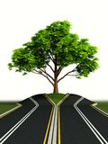 Tree in the middle of road Stock Image