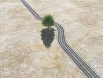 With a tree in the middle of the road Royalty Free Stock Photography