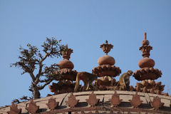 Tree and Monkey on Temple Roof Royalty Free Stock Images