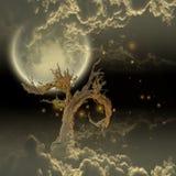 Tree moon and stars. Tree Moon, Cloud and Stars Royalty Free Stock Photography