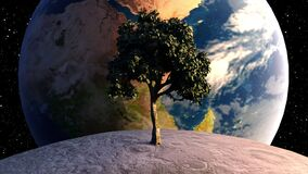 Tree on the moon in front of the Earth planet against the backdrop of celestial bodies and stars. Computer generated