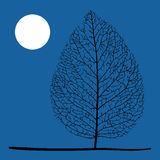 Tree and moon Royalty Free Stock Image