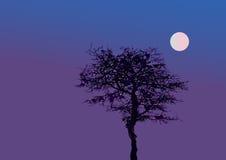 Tree at moonlight. A illustrated tree in moonlight Stock Photo