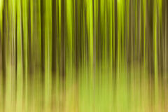 Tree motion effect with green and brown colors Stock Image