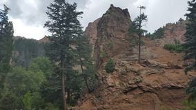 Tree mountain. royalty free stock photography