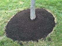 Free Tree Mulch Stock Photos - 54089663