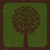 Tree natural Royalty Free Stock Photography