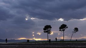 The Tree in Nature and Clouds and People Silhouette. Video stock video