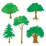 Tree Nature Green Cartoon Vector Royalty Free Stock Photos
