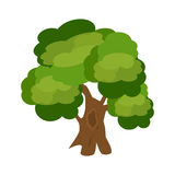 Tree nature green vector. Stock Image