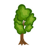 Tree nature green vector. Royalty Free Stock Images
