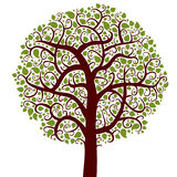 Tree,  nature symbol Royalty Free Stock Photography