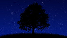 Tree at Night (Animated Background). A HD animation of a stylized tree silhouette, set on a grassy hill. The plants are gently swaying in the wind stock video