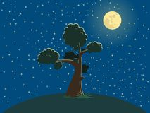 Tree. In the night on the hill Royalty Free Stock Photo