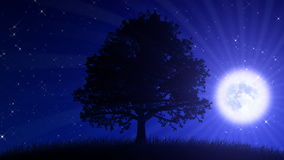 Tree at Night with Moon (Animated Background). A HD animation of a stylized tree silhouette, set on a grassy hill. The plants are gently swaying in the wind stock footage
