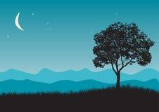 Tree in night scene. Vector illustrations vector illustration