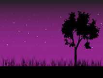 Tree in the night. Vector. Royalty Free Stock Photos