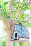 Fågelhus på en tree Arkivfoton