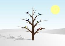 Tree och fåglar Arkivfoto