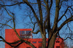 A tree with an office building. A red office building with a tree Royalty Free Stock Images