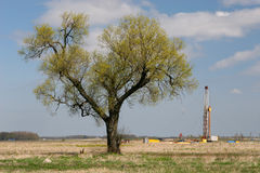 Tree and oil drilling rig Stock Photography