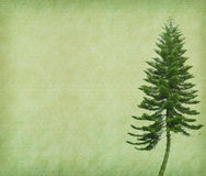 Tree with old grunge antique paper Royalty Free Stock Photography