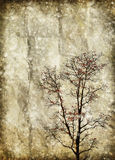 Tree on old grunge paper Stock Image