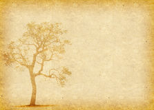 Tree with old paper Royalty Free Stock Image