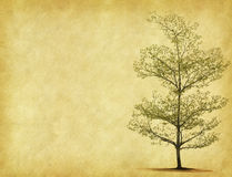 Tree with old paper Royalty Free Stock Photography