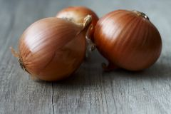 Full of vitamins onions lay on the table. Tree onions on the table Royalty Free Stock Images