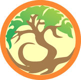 Tree in orange round. Illustration of a tree in orange round Royalty Free Stock Photo