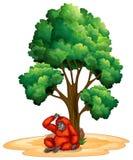 Tree and orangutan Royalty Free Stock Image