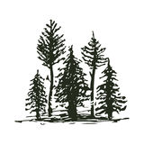 Tree outdoor travel black silhouette coniferous natural badge, tops pine spruce branch cedar and plant leaf abstract. Tree outdoor travel black silhouette logo Stock Image