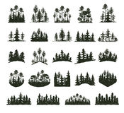 Tree outdoor travel black silhouette coniferous natural badges, tops pine spruce branch cedar and plant leaf abstract