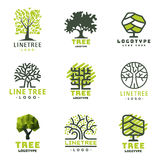 Tree outdoor travel green silhouette forest badge coniferous natural badge tops line spruce vector. Tree outdoor travel green silhouette forest logo coniferous Stock Photography