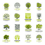 Tree outdoor travel green silhouette forest badge coniferous natural badge tops line spruce vector. Stock Images