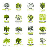 Tree outdoor travel green silhouette forest badge coniferous natural badge tops line spruce vector. Royalty Free Stock Photos