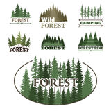 Tree outdoor travel green silhouette forest badge coniferous natural logo badge tops pine spruce vector. Stock Photography