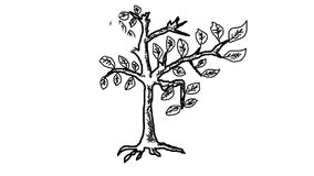 Tree outline sketch of a black-white appear on the. Tree  outline sketch of a black-white appear on the white isolated stock footage