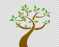 tree over a blank design layer illustration Royalty Free Stock Image