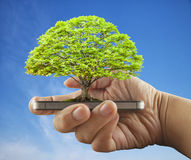 Tree over smartphone Royalty Free Stock Photo