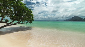 Tree over the water on the Las Cabanas beach in El Nido. Palawan island, Philippines stock video