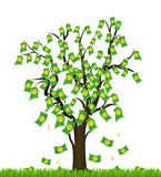 Tree overgrown with money. Business success Stock Photos