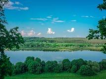 Tree på floden Royaltyfria Foton