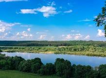 Tree på floden Royaltyfria Bilder
