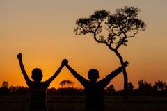 Tree på solnedgången Arkivfoton