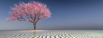 Tree på stranden Arkivfoton